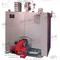 Чугунный газовый котел КЧВа-0,25Гн